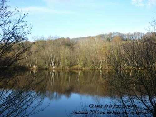 Around Lande Pourrie - Hikes & walks in Saint-Cyr-du-Bailleul