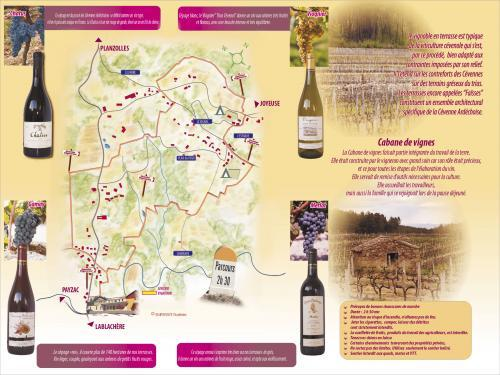 Winemaker's Trail - Hikes & walks in Lablachère