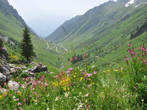 Aime-la-Plagne - Tourism, holidays & weekends guide in the Savoie