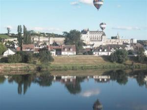 Overview of Amboise balloon