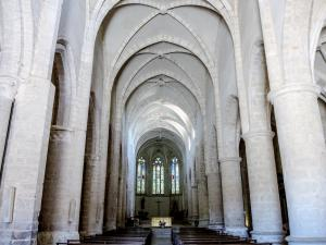 Nave of the Abbey Church (© J.E)