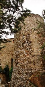 Fortified tower of the 13th century