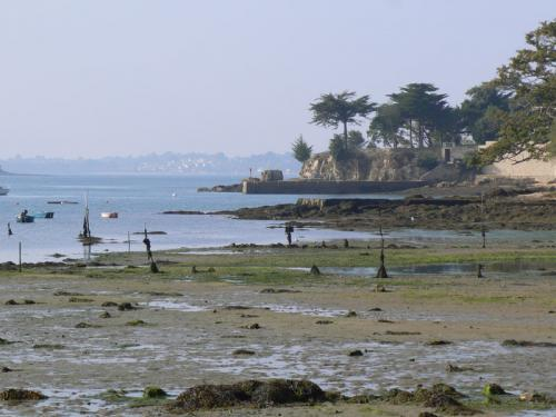 Arradon - Tourism, holidays & weekends guide in the Morbihan