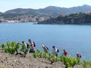 Hiking coastline to Banyuls-sur-Mer