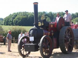 Festival Combine and Crafts: Road Steam 1921 walk visitors