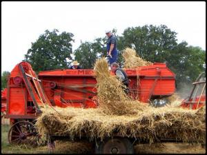 Festival Combine and Crafts: the harvester in action