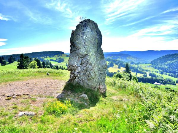 Basse-sur-le-Rupt - Tourism, holidays & weekends guide in the Vosges
