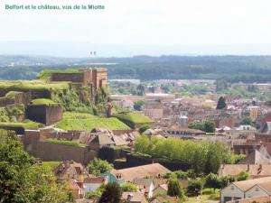 Belfort and Castle viewed from the Miotte (© Jean Espirat)
