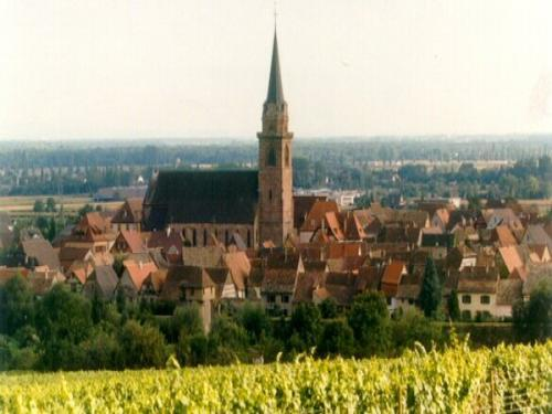 Bergheim - Tourism, holidays & weekends guide in the Haut-Rhin