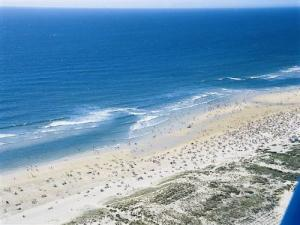 Aerial view of the beach Biscarrosse
