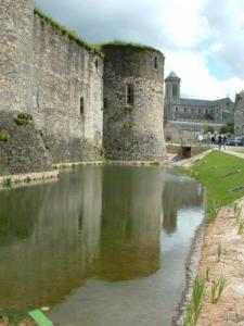 the moat around the castle