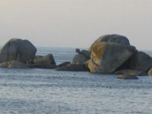 The Turtle rock and later, the rock of Toad