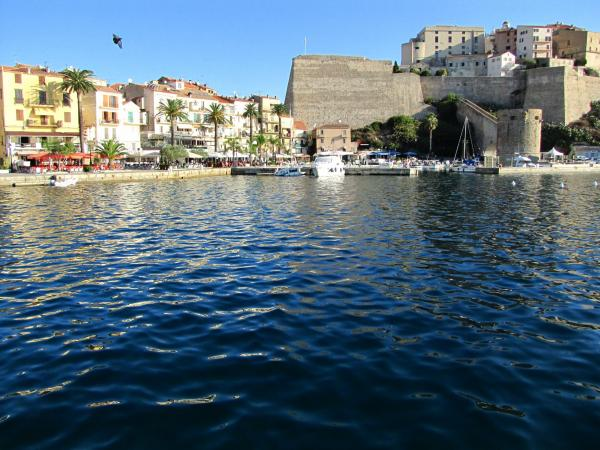 The port and the citadel of Calvi