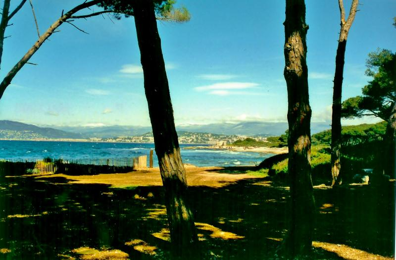 Island Sainte-Marguerite - Natural site in Cannes