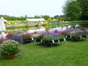 Plant Festival of Cardroc