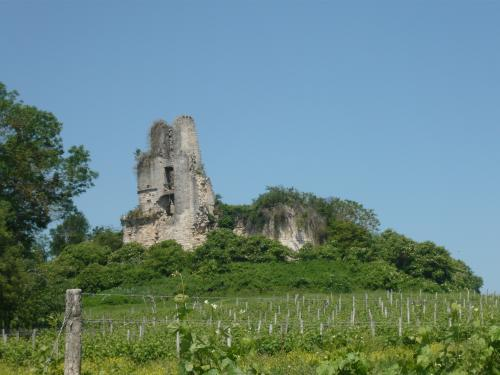 Carsac-de-Gurson - Tourism, holidays & weekends guide in the Dordogne