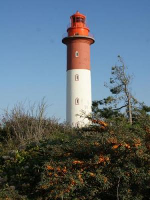Lighthouse Of Cayeux Monument In Cayeux Sur Mer