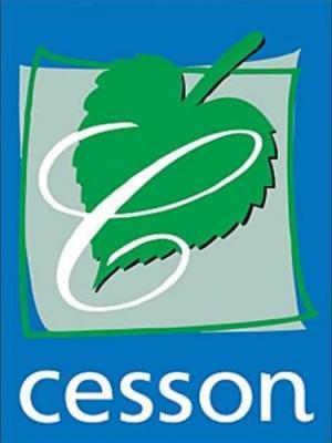 Guide de cesson tourisme vacances week end for Piscine cesson