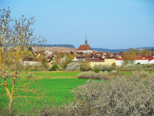 Chablis - Tourism, holidays & weekends guide in the Yonne