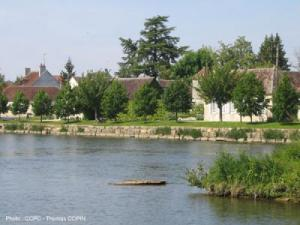 The banks of the Yonne