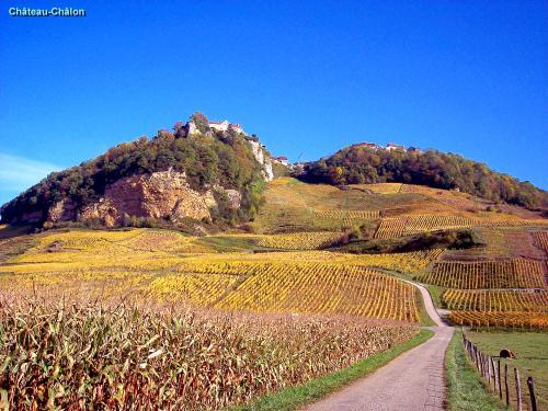 Château-Chalon - Tourism, holidays & weekends guide in the Jura