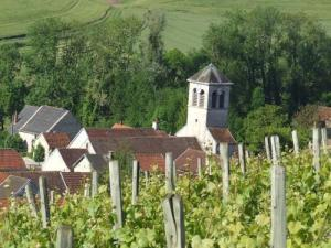 The village and its vineyards Chaumont-le-Bois
