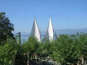 Chens at the water's edge to Tougues: sails and trees