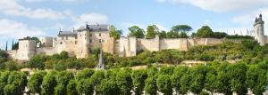 Royal Fortress of Chinon, view of Vienna