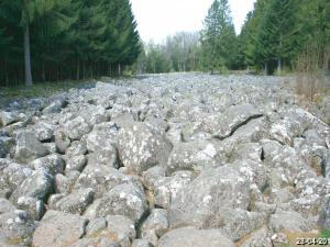 This field of rocks really resembles a river of stones (© J.E)