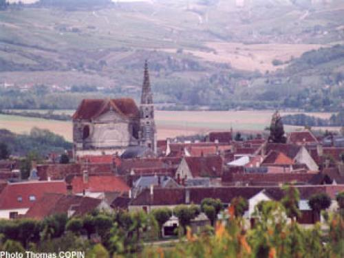 Coulanges-la-Vineuse - Tourism, holidays & weekends guide in the Yonne