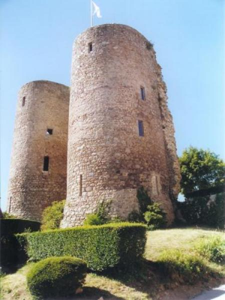 Castle of Crocq - Monument in Crocq