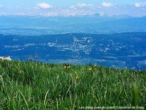 View of the Alps from the Grand Colombier Culoz