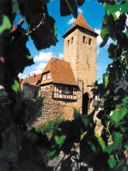 Dambach-la-Ville - Tourism, holidays & weekends guide in the Bas-Rhin