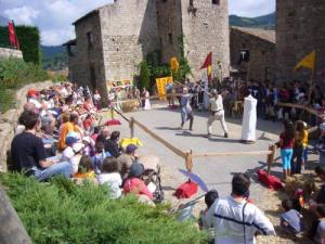 Day medieval battle on the area of the castle