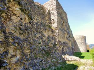 Gallo-Roman Northern wall and tower Sainte-Agathe (© JE)