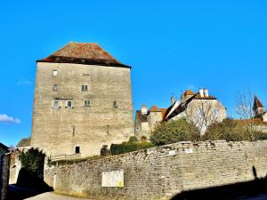 Tour of the castle (© Jean Espirat)