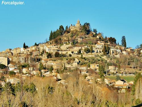 Forcalquier - Tourism, holidays & weekends guide in the Alpes-de-Haute-Provence