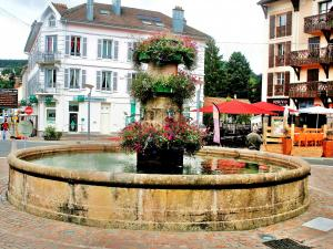 flowered fountain in a square (© Jean Espirat)
