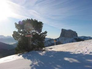 Top of the slopes, view of Mont Aiguille