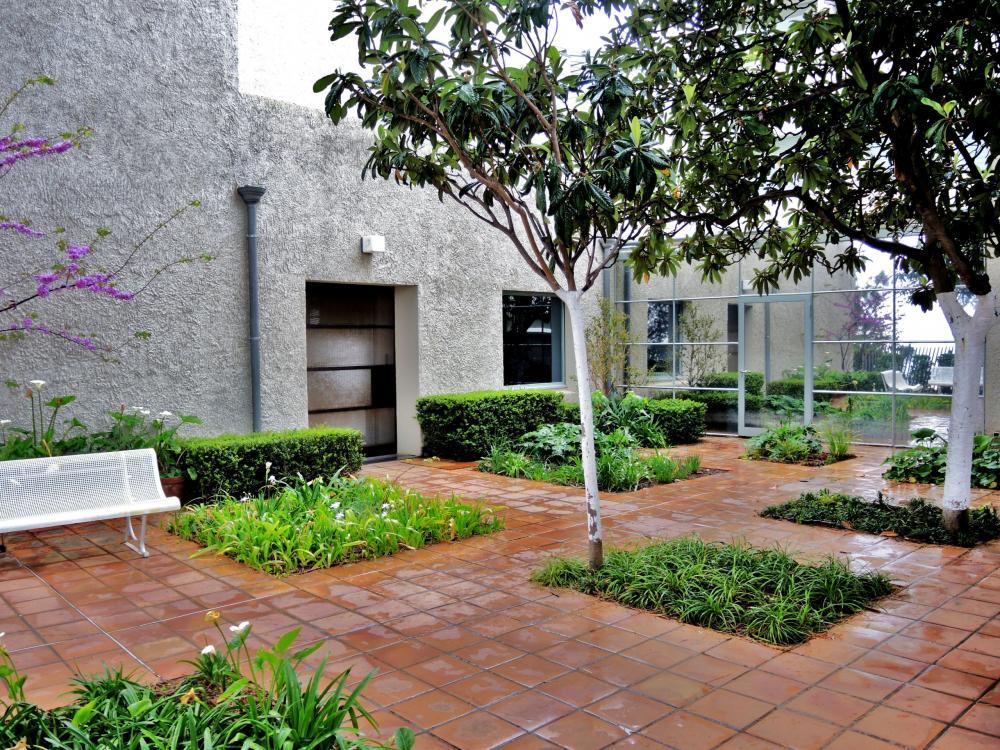Photos hy res guide tourisme vacances for Jardin villa noailles hyeres