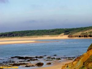 Payré Estuary, a beautiful site not to be ignored