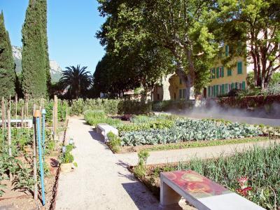 Jardin de baudouvin lieu de loisirs la valette du var - Comment supprimer le liseron au jardin ...