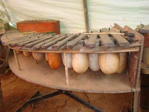 Xylophone gourd