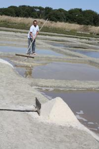 Saunier harvesting salt at the port of Salines