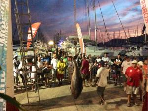 Fishing International Tournament