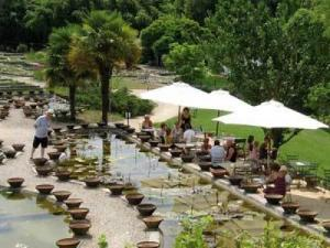 P pini re latour marliac lieu de loisirs au temple sur lot - Jardin des nenuphars le temple sur lot ...