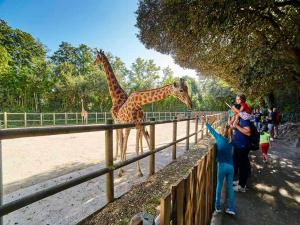 Zoo of the Sands of Olonne
