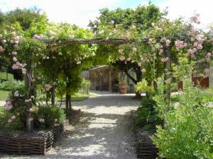 Garden of medieval inspiration in June