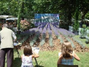 Montélimar Color Lavender, the largest celebration of lavender