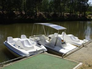 Boat Rental in lake